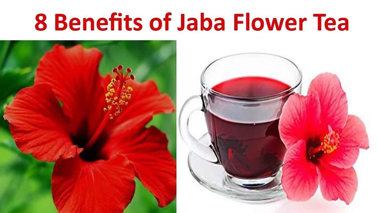 8 Benefits of Jaba Flower Tea